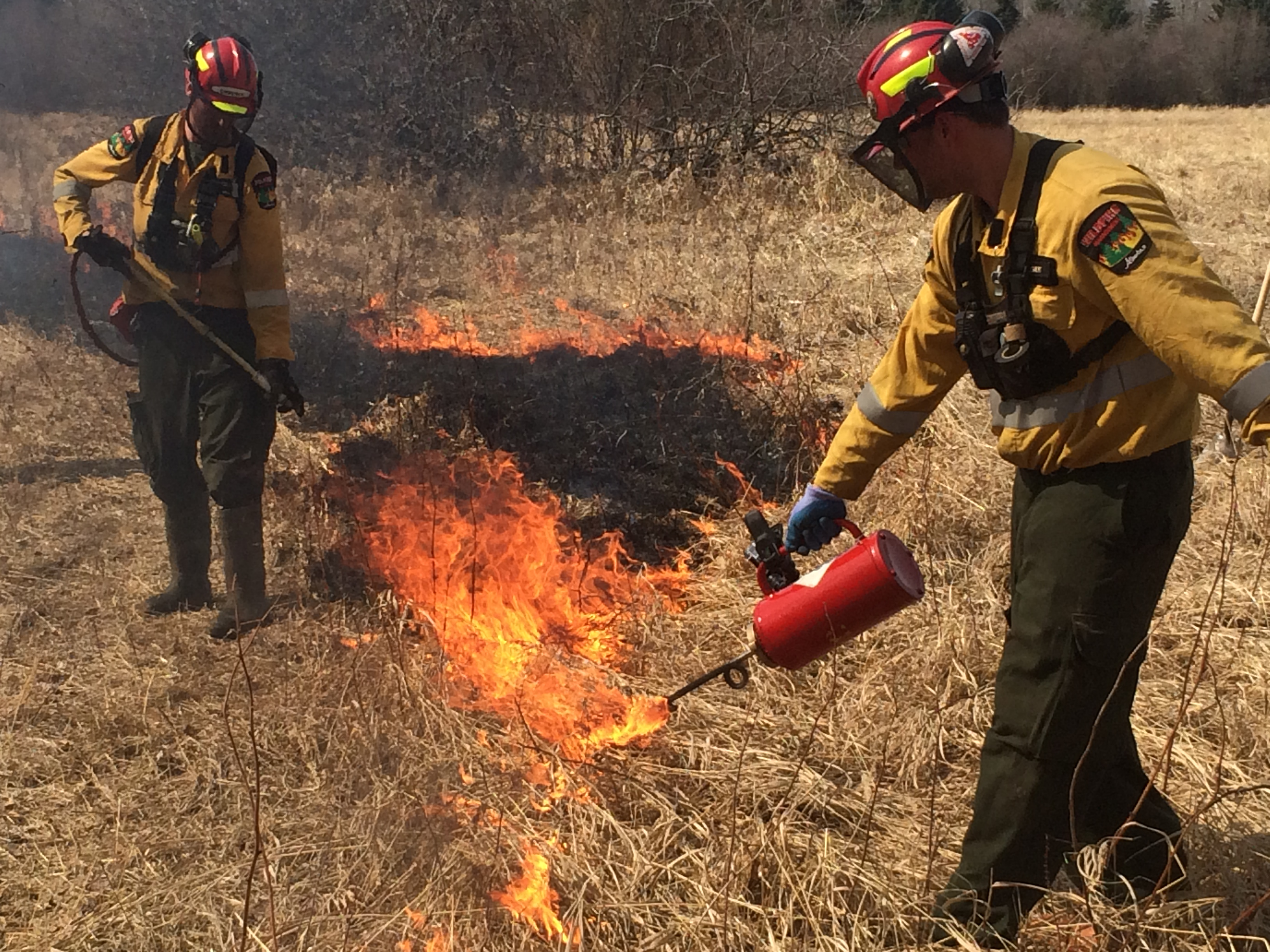Prescribed_fire_ignition_by_drip_torch.jpg