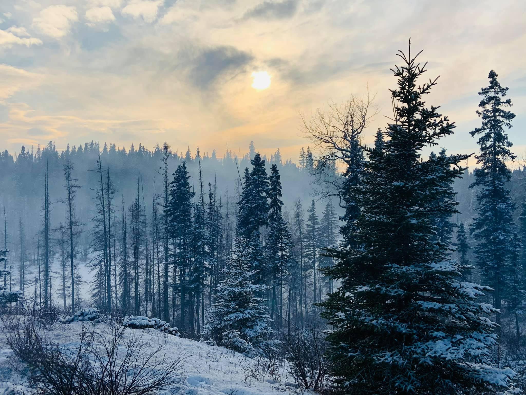 42 Dec 10 Smoke Inversion