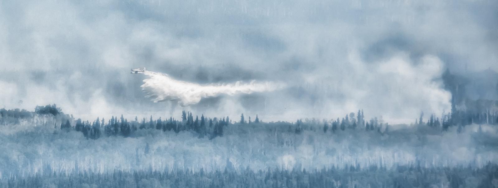 Wildfire_-_Hutch_Lake_Alberta_Canada_-_17