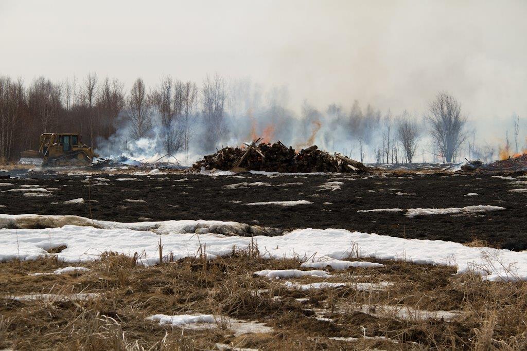 brushpile_burning