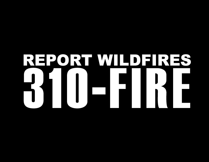 310-FIRE-knocked-out - white and black